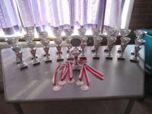 Cks 2016 (1) Bekers en Medailles